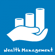 wealth-management-icon_bsg