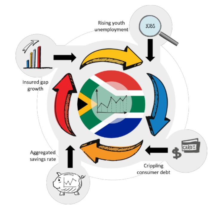 wealthmanagement_bsg
